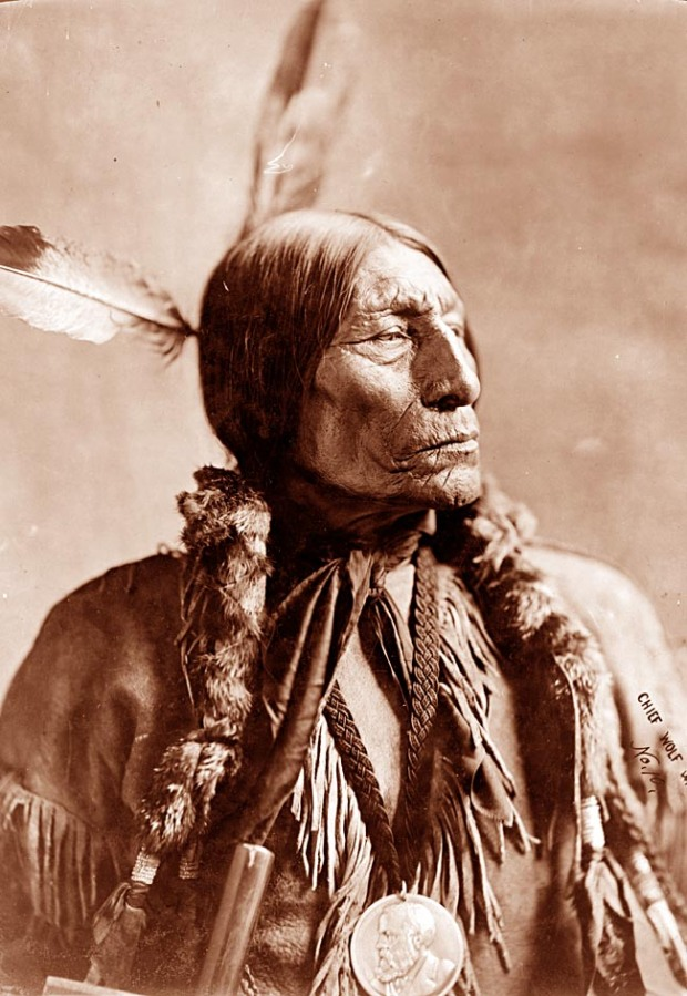 cheyenne-chief